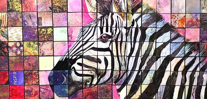 Color, Black & White exhibits at Visual Arts Center in Punta Gorda