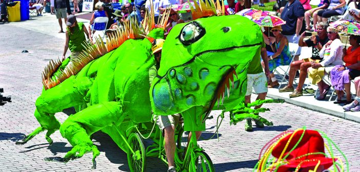Papio Kinetic Sculpture and Art Bike Parade